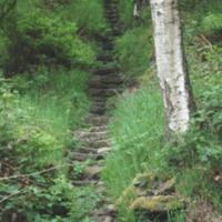 http://www.penninehorizons.org/Omeka_photos/HBW00161.jpg