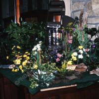 http://www.penninehorizons.org/Omeka_photos/KST00123.jpg