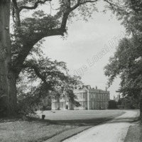 Howsham Hall, with Elm Tree - HLS05906