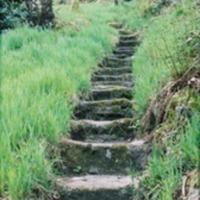 http://www.penninehorizons.org/Omeka_photos/HBW00654.jpg