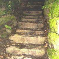 http://www.penninehorizons.org/Omeka_photos/HBW00577.jpg