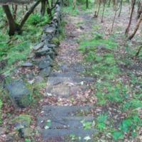 http://www.penninehorizons.org/Omeka_photos/HBW00130.jpg