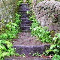 http://www.penninehorizons.org/Omeka_photos/HBW00174.jpg