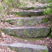 http://www.penninehorizons.org/Omeka_photos/HBW00358.jpg