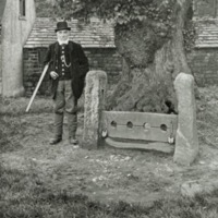 Weston Hall, the parish Stocks - HLS06047