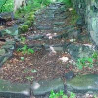 http://www.penninehorizons.org/Omeka_photos/HBW00105.jpg