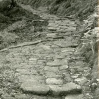 Track in Lee Wood, Heptonstall - DTA00375