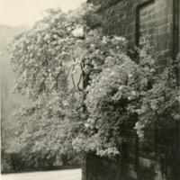 Mayroyd Hall - EWW00154