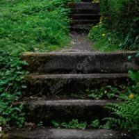 http://www.penninehorizons.org/Omeka_photos/HBW00666.jpg