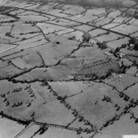 Aerial View of a Poultry Farm - THB00183