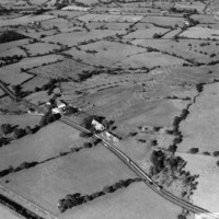 Aerial View of a Poultry Farm - THB00184