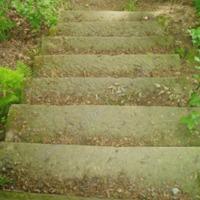 http://www.penninehorizons.org/Omeka_photos/HBW00286.jpg