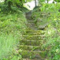 http://www.penninehorizons.org/Omeka_photos/HBW00133.jpg