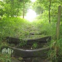 http://www.penninehorizons.org/Omeka_photos/HBW00926.jpg