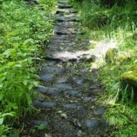 http://www.penninehorizons.org/Omeka_photos/HBW00953.jpg