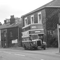 Bus at Eastwood - TAS00246