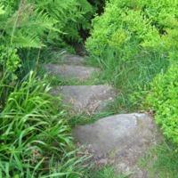 http://www.penninehorizons.org/Omeka_photos/HBW00262.jpg
