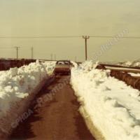 Sowerby?, 24th March, 1979 - RSC00233