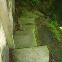 http://www.penninehorizons.org/Omeka_photos/HBW00117.jpg