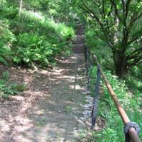 http://www.penninehorizons.org/Omeka_photos/HBW00259.jpg