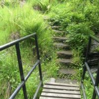 http://www.penninehorizons.org/Omeka_photos/HBW00313.jpg