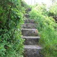 http://www.penninehorizons.org/Omeka_photos/HBW00265.jpg