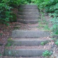 http://www.penninehorizons.org/Omeka_photos/HBW00288.jpg