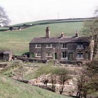 Paradise, Midgley - EFM00197