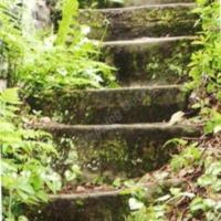 http://www.penninehorizons.org/Omeka_photos/HBW00560.jpg