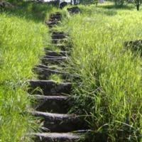 http://www.penninehorizons.org/Omeka_photos/HBW00503.jpg