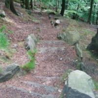 http://www.penninehorizons.org/Omeka_photos/HBW00301.jpg