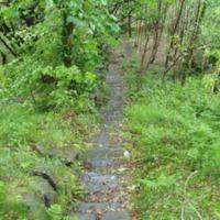 http://www.penninehorizons.org/Omeka_photos/HBW00129.jpg